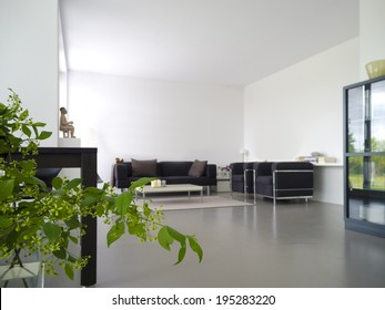 modern private living and dining room with plant in the foreground
