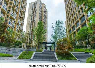 Modern residential house, tree, ladder