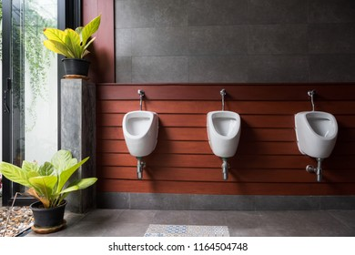 modern restroom with urinal row with plant decoration in garden.