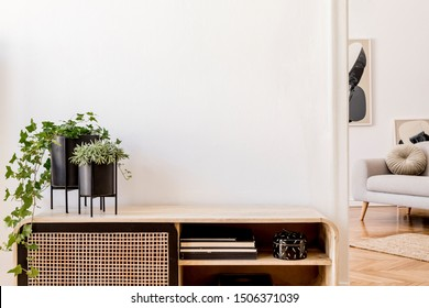 Modern scandinavian home interior with design wooden commode, plants in black pots, gray sofa, books and personal accessories. Stylish home decor. Template. Copy space. White walls. - Shutterstock ID 1506371039