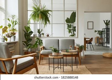 Modern scandinavian interior of living room with design grey sofa, armchair, a lot of plants, coffee table, carpet and personal accessories in cozy home decor. Template. - Shutterstock ID 1825888148
