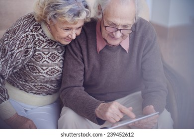 Modern seniors looking for information in internet