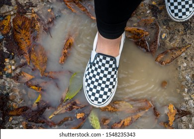 A modern shoe warn by young female stepping in puddle with leaves around.
