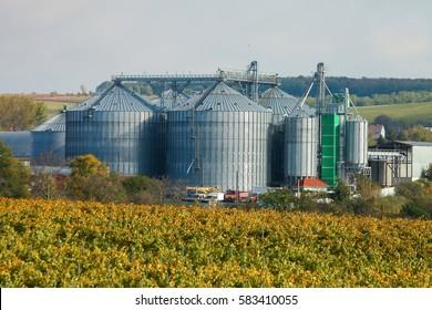 Modern Silo - agro storage