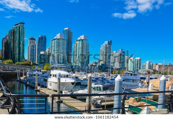 Modern Skyscrapers Port with Luxury Yachts in Vancouver, BC on a Clear and Beautiful Day