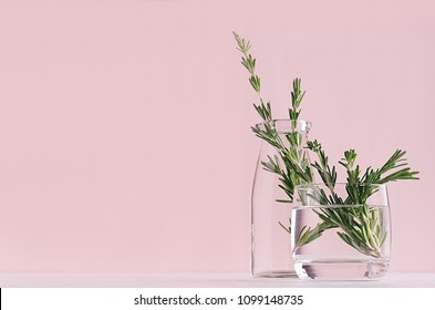 Modern soft light pink pastel home interior with green plant in transparent vintage glasson white wood background.