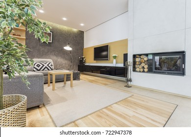 Modern and spacious living room with fireplace and plasma tv