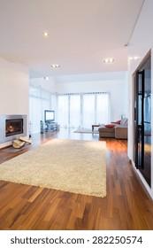 Modern spacious lounge in big rich house