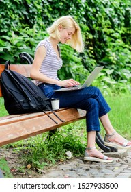 Modern student life. Regular student. Surfing internet. Girl adorable student with laptop and coffee cup sit bench in park. Woman student work with notebook. Learn study explore. Study outdoors.