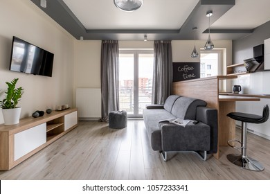 Modern studio flat with dropped ceiling and gray couch