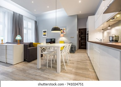 Modern studio flat with kitchen open to living room
