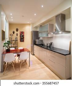 Modern studio interior in private house. Kitchen