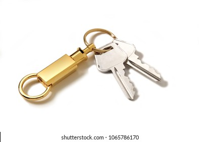 A modern styled detachable gold keyring with two keys attached.
