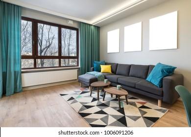 Modern stylish interior design - living room with gray sofa