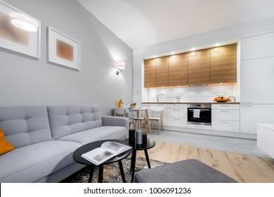 Modern stylish interior design - living room and kitchen