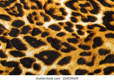 Modern stylish texture. The tiger cotton chintz.