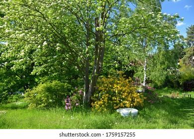 A modern well hidden within the garden.