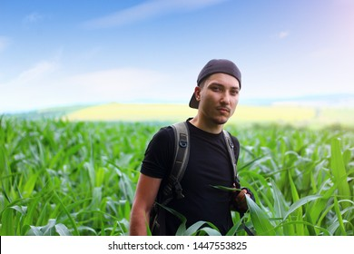 Modern young farmer in a field of corn, toned