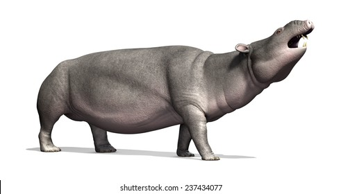 The Moeritherium is a prehistoric mammal that is related to the elephant; it lived 30 - 37 million years ago - 3d render.