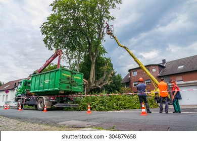 MOERS, GERMANY - AUGUST 10 2015: Workers felling the more than 500 year old Emperor Beech