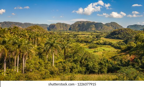 Mogotes and green fields in Vinales valley, Cuba