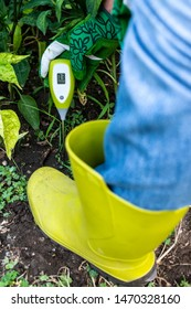 Moisture meter tester in soil. Measure soil for humidity with digital device. Woman farmer in a garden. Concept for new technology in the agriculture.