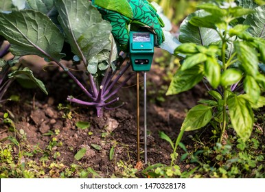 Moisture meter tester in soil. Measure soil for humidity, nitrogen and HP with digital device. Woman farmer in a garden. Concept for new technology in the agriculture.