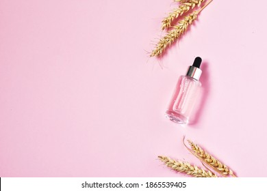 Moisturizing product in a transparent glass bottle with pipette. Serum in glass bottle with a pipette with ears of wheat on pink background. Concept of natural cosmetic. Flat lay, copy space.
