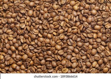 Mojana coffee beans background texture wallpaper