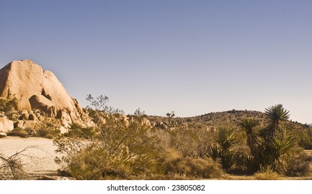 Mojave desert view from Twin Rocks at Joshua Tree National Park