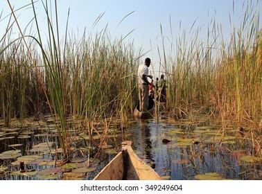 Mokoro Safari in Okavango Delta, Botswana