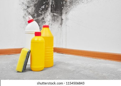 Mold. Aspergillus. Detergents, household gloves, a sponge, a bucket on a white wall background with a black fungus.