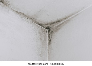 Mold from condensation on the walls corner in the room stock photo