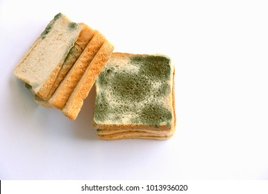 Mold growing rapidly on moldy bread  on white background. Scientists modify fungus found on bread into an anti-virus chemical.