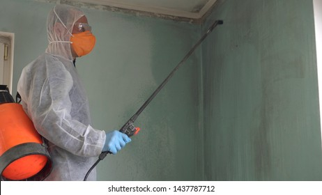 Mold remediation expert. Mold Inspections and Air Quality Testing. Black mold and mildew disinfectants labeled as a fungicide and mildewstat