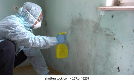 Mold removal company. Worker In Uniform Spraying Pesticide On Damaged Wall With Sprayer