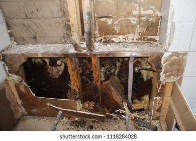 Molded wood and planks, caused by water damage in a bathroom