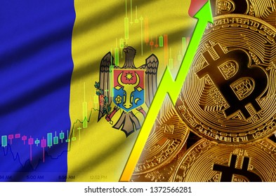 Moldova flag and cryptocurrency growing trend with many golden bitcoins