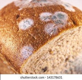 Moldy bread. Top view