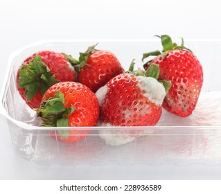 Moldy strawberries in a plastic package on grey background.
