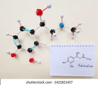 Molecular structure model and structural chemical formula of adrenaline molecule. Adrenaline (adrenalin or epinephrine) is a hormone, neurotransmitter and medication. Black=C, red=O,blue=N, white=H.
