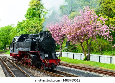 Mollie Steam Train in Warnemunde.