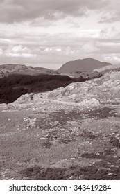Molls Gap; Killarney National Park, County Kerry; Ireland in Black and White Sepia Tone - Shutterstock ID 343419284
