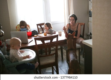 Mom with children and a dog in the kitchen, watching a cartoon, drinking coffee, real kitchen in a rented apartment, chaos