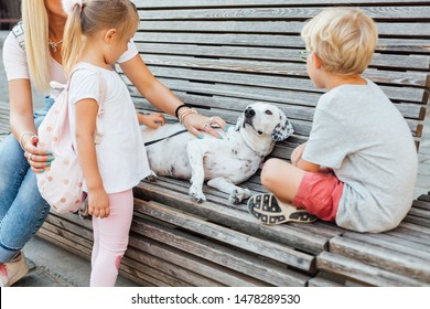Mom with children and dog sitting on a bench. Mothers day.