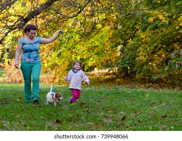 Mom with a little girl and dog in the park. Autumn and beautiful orange colors of the leaves.