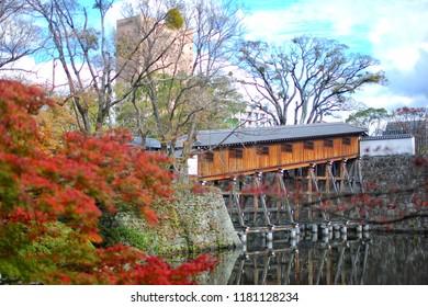 Momijdani Teien Garden in Wakayama Castle , Wakayama , Japan.