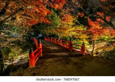 Momijidani park Japanese Garden at Miyajima in autumn with maple leaves at Hiroshima, Japan