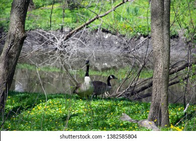 momma and Dady duck out for some fresh air
