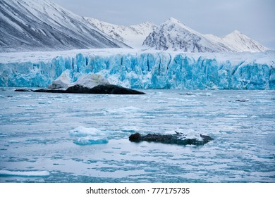 Monaco Glacier in the Svalbard Islands (Spitsbergen) in the High Arctic. The glacier is named after Prince Albert II of Monaco's expedition to Spitsbergen in the 1980s.